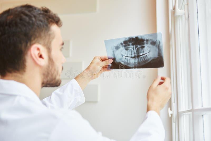 Radiologie som kontrollerar röntgenstrålebild royaltyfria foton