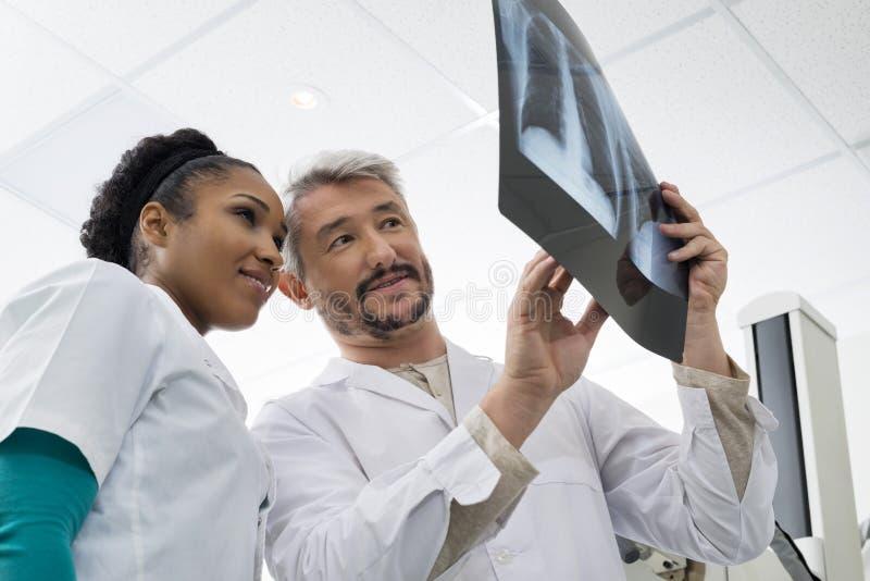 Radiologistas que analisam o raio X de caixa na sala do exame imagem de stock