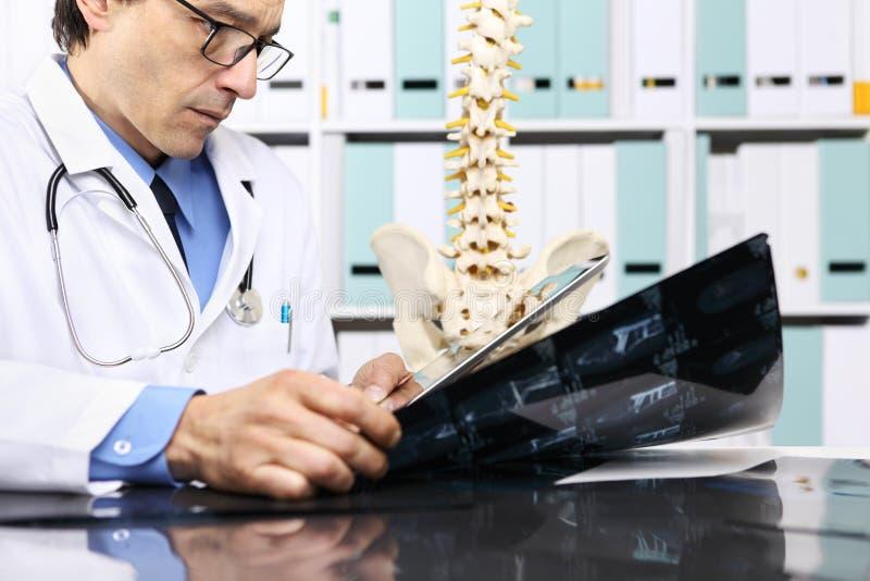 Radioloog arts die röntgenstraal, gezondheidszorg, medisch concept controleren royalty-vrije stock foto