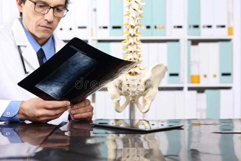 Radioloog arts die röntgenstraal, gezondheidszorg, medisch concept controleren stock afbeeldingen