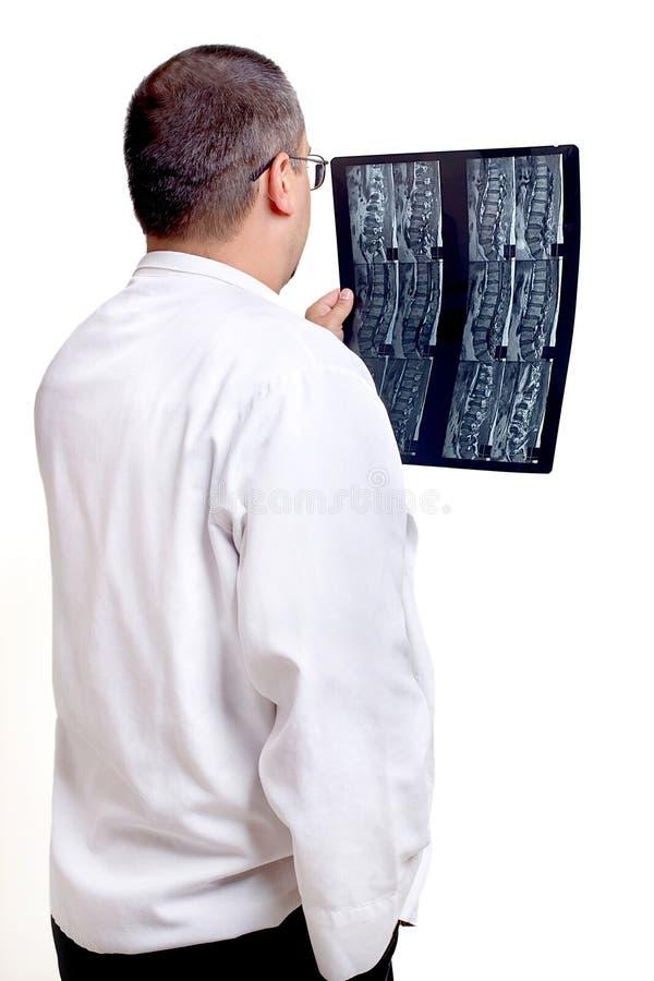 Radioloog, Phycisian, Arts stock afbeeldingen