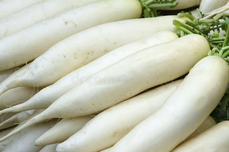 Radis blancs photos stock
