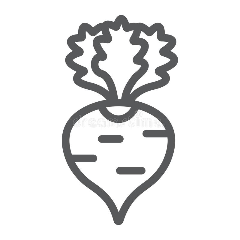 Radish line icon, fruits and vegetables, beetroot sign, vector graphics, a linear pattern on a white background. Radish line icon, fruits and vegetables vector illustration