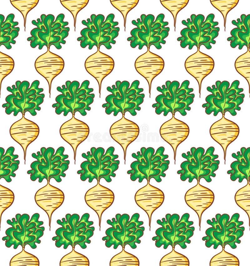 Radish pattern vector illustration