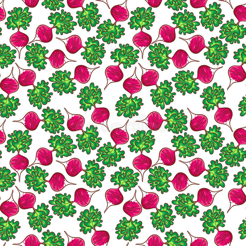 Radish pattern royalty free illustration