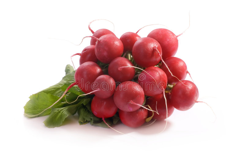 Download Radishes stock photo. Image of macro, vegetable, eating - 5018842