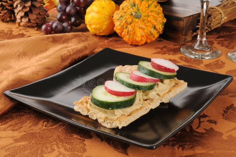 Radishes, Cucumbers And Hummus On Flatbread Stock Image
