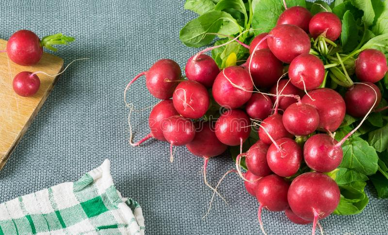Radishes tied in bunch with green leaves, wooden board and dish towel on gray tablecloth. Fresh red radishes tied in bunch with green leaves, wooden board and royalty free stock photography