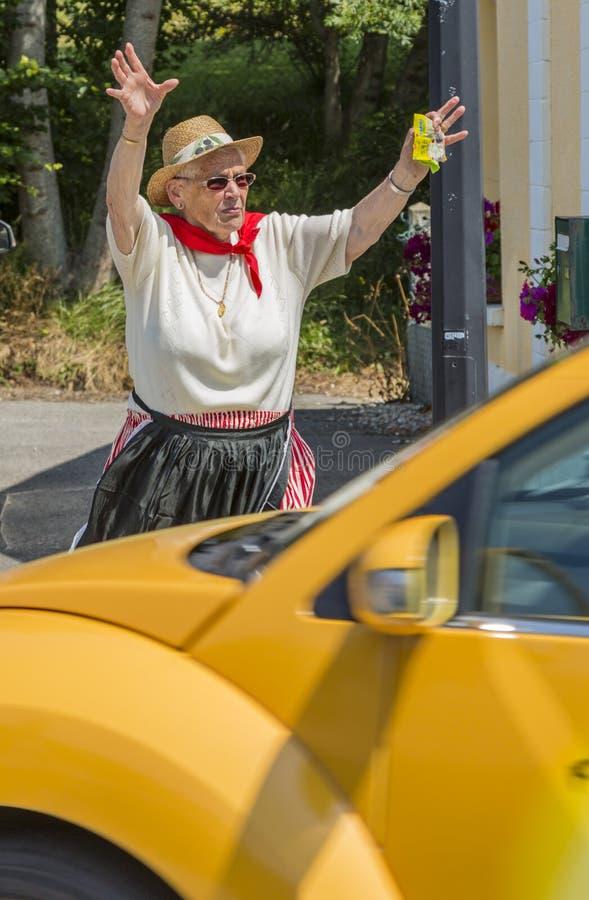 Radość rozgłos karawana - tour de france 2015 zdjęcia stock