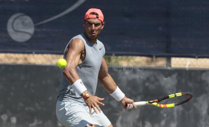 Rafa nadal gesturing during a training session in santa ponsa mallorca. Spain tennis player Rafa Nadal gestures during a training session in grass court to stock photos
