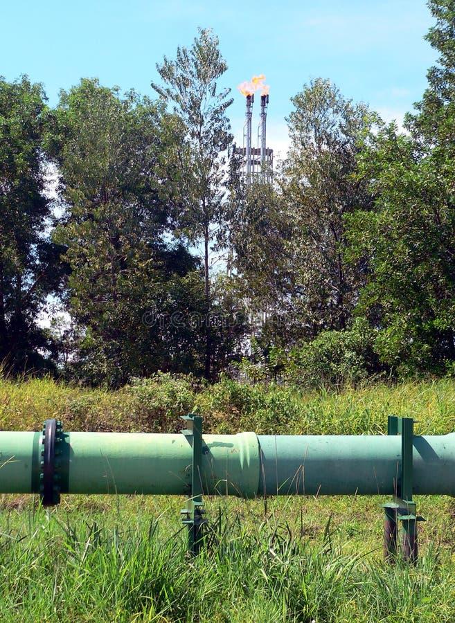raffinaderi för brunei råoljapipeline royaltyfri fotografi