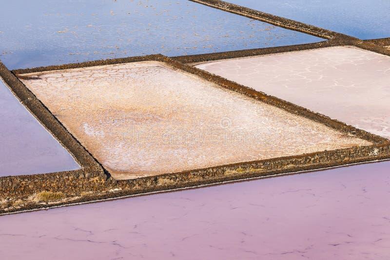 Raffineria del sale, salina da Janubio, Lanzarote fotografia stock
