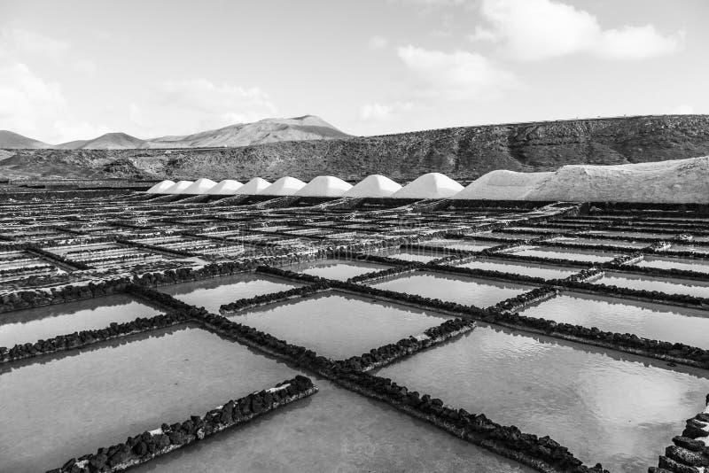 Raffineria del sale, salina da Janubio, Lanzarote fotografie stock