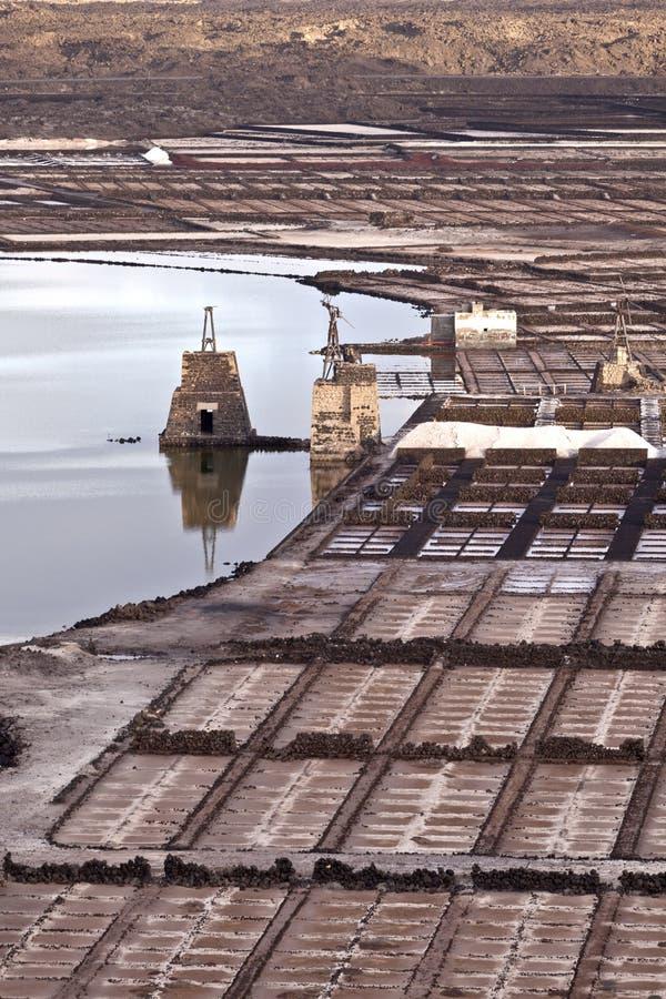 Raffineria del sale, salina da Janubio, Lanzarote immagini stock libere da diritti
