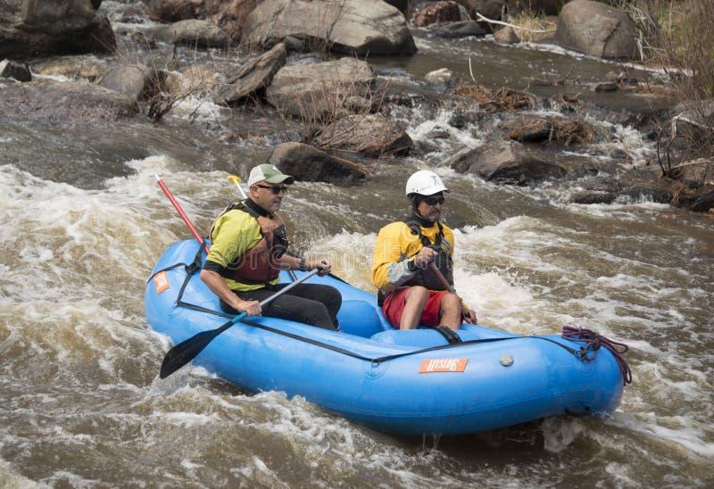Rafting del whitewater di due uomini sul fiume popolare di Poudre in Colorado sul fiume di Poudre, Colorado, U.S.A., l'8 maggio immagine stock libera da diritti