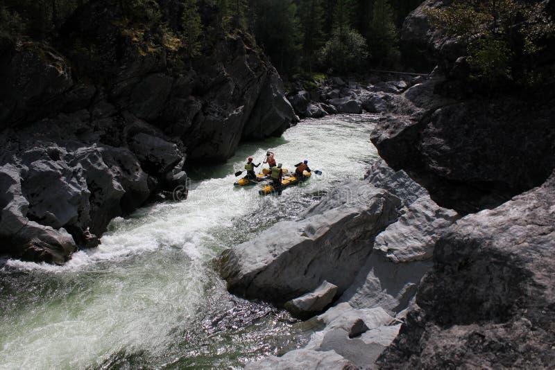 Rafting estremo sul fiume di Bashkaus fotografie stock