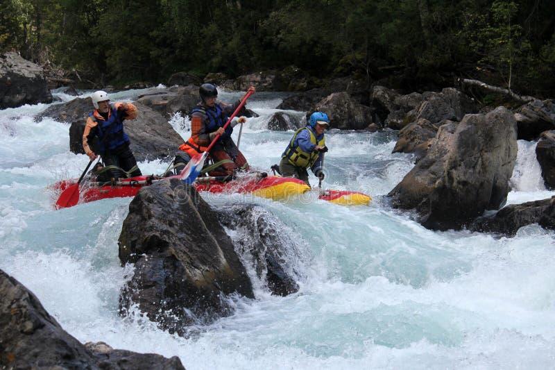 Rafting estremo sul fiume di Bashkaus, sport estremo immagine stock