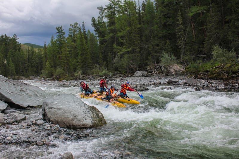 Rafting estremo sul fiume di Bashkaus, sport estremo fotografia stock