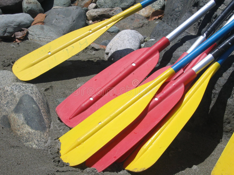 Rafting Paddles royalty free stock images