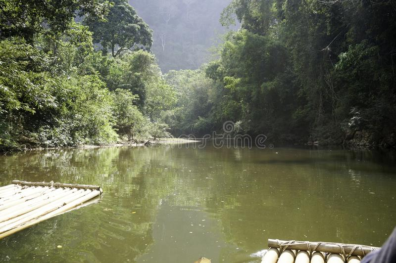 a rafting tour in the jungle stock photo