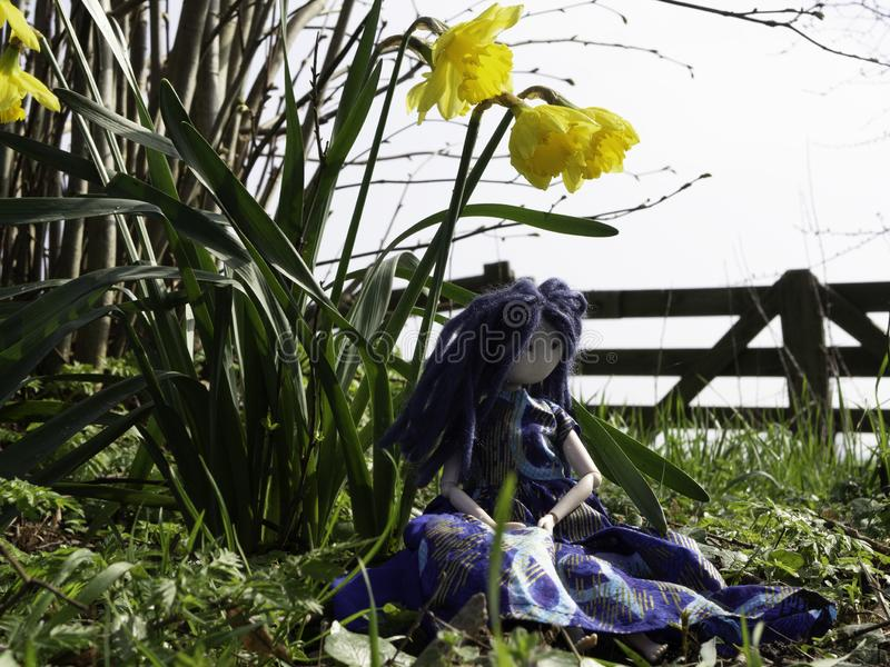 Rag doll with blue hair sitting underneath daffodils stock image