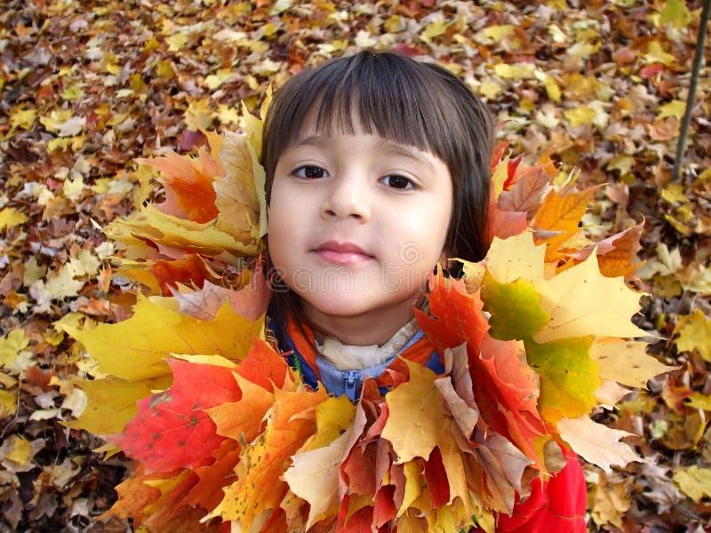 Ragazza 1 di autunno immagini stock