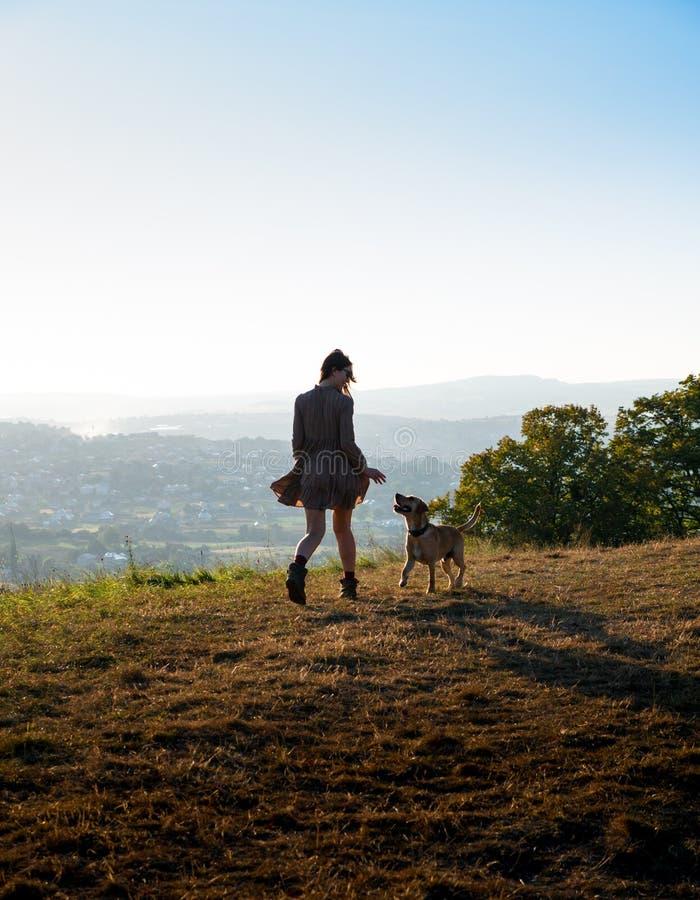 Ragazza adorabile che gioca funzionamento con il suo cane sveglio sulla natura durante il tramonto fotografia stock libera da diritti