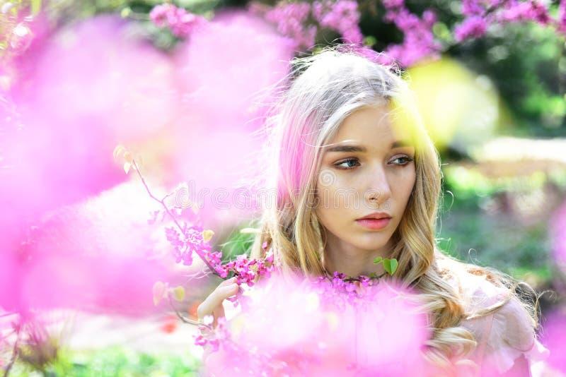Ragazza adorabile con capelli biondi arricciati che vagano nel frutteto di fioritura Giovane signora graziosa che tiene ramoscell immagini stock