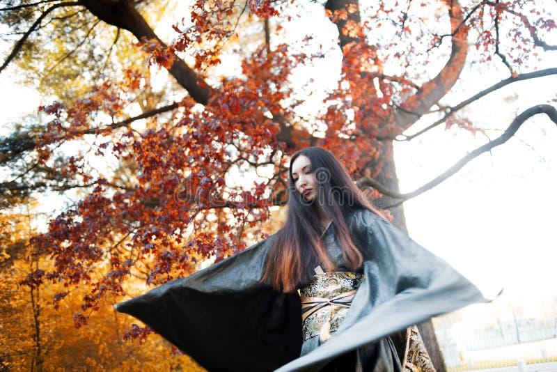 Ragazza asiatica in kimono su fondo dell'acero rosso fotografia stock libera da diritti