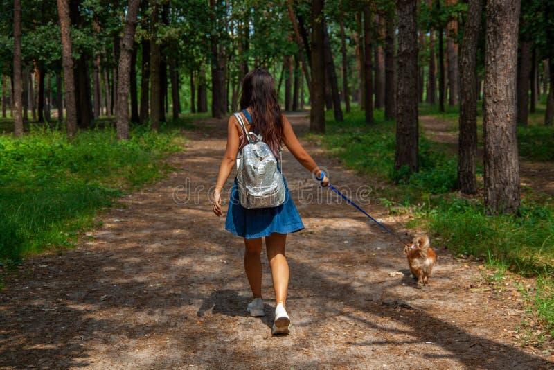 Ragazza asiatica sveglia con poco cane che cammina nel parco Donna che si siede sull'erba verde con il cane - all'aperto in ritra fotografie stock