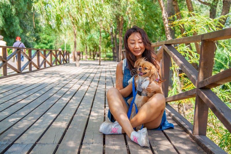 Ragazza asiatica sveglia con poco cane che cammina nel parco Donna che si siede sull'erba verde con il cane - all'aperto in ritra fotografia stock libera da diritti