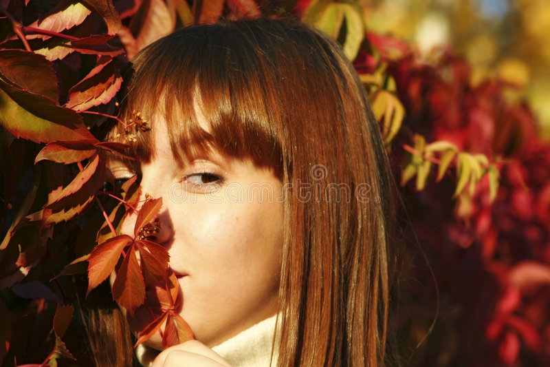 Ragazza in autunno 1 immagine stock libera da diritti