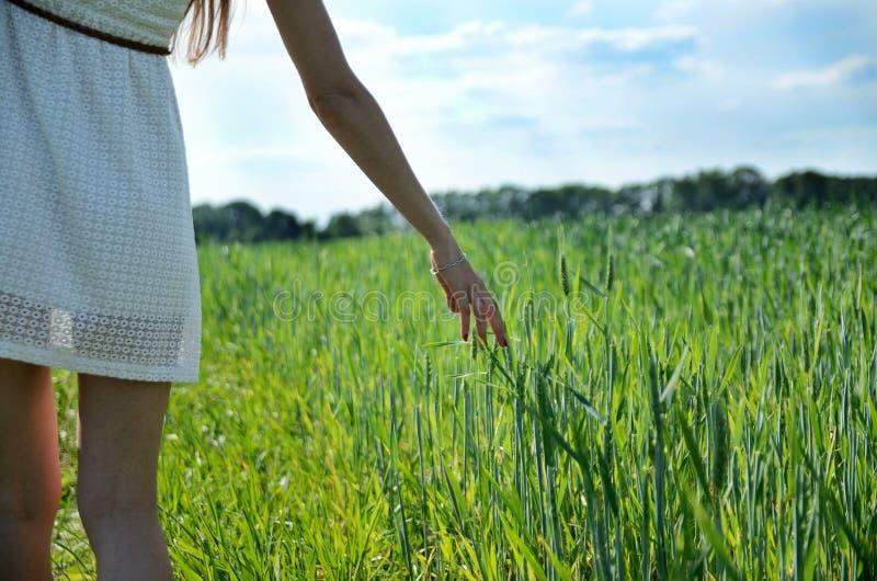 Ragazza bianca del vestito e campo verde immagini stock libere da diritti