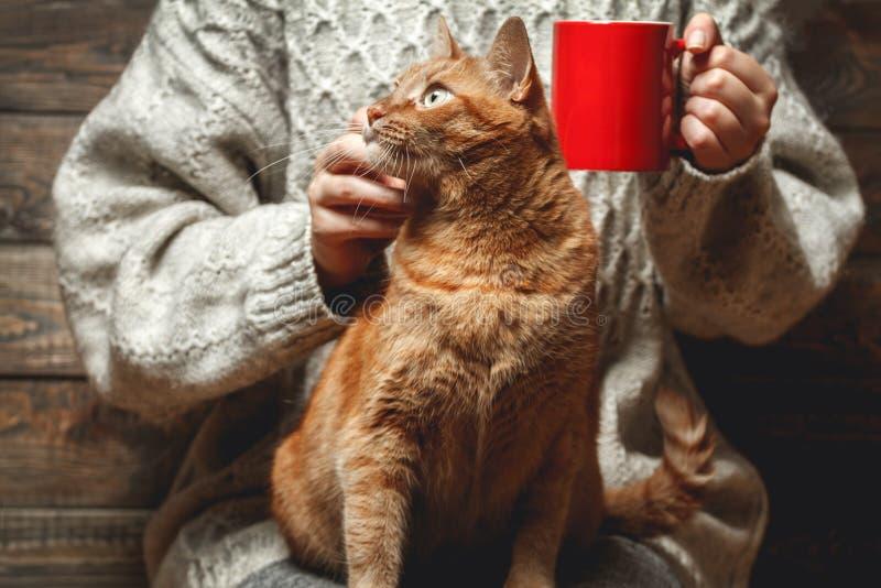 Ragazza in caffè bevente del maglione caldo fotografie stock