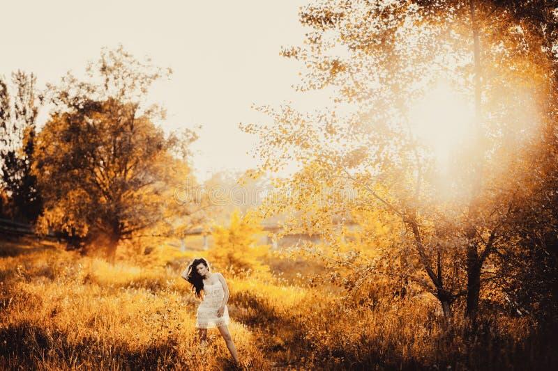 Ragazza castana in breve vestito in un parco fotografia stock