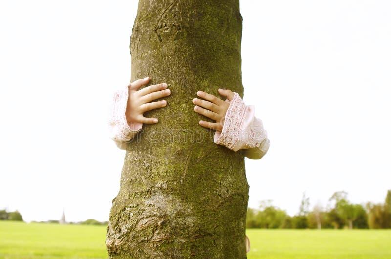 Ragazza che abbraccia albero in parco. fotografia stock