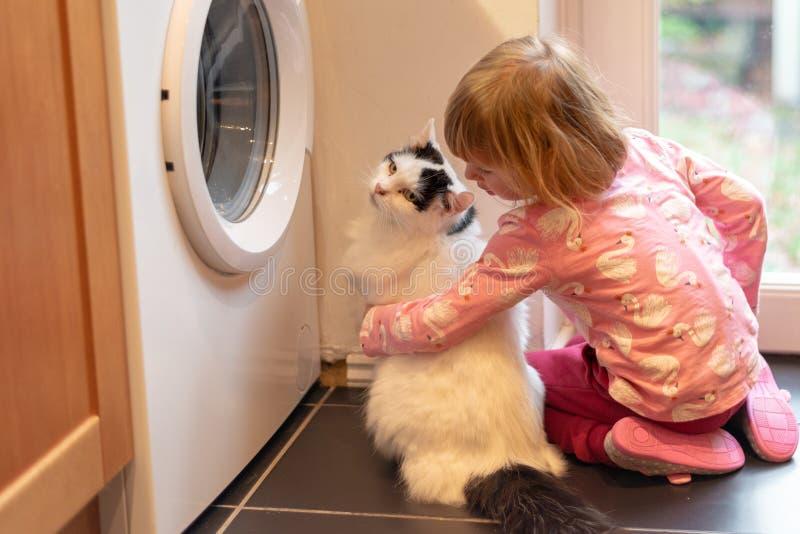 Ragazza che abbraccia gatto in cucina fotografie stock