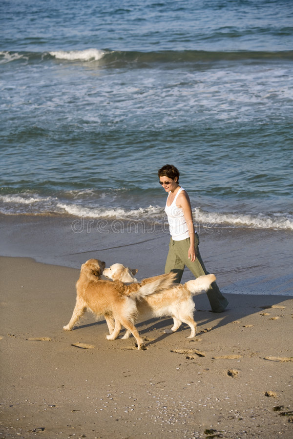 Ragazza che cammina con i cani fotografia stock