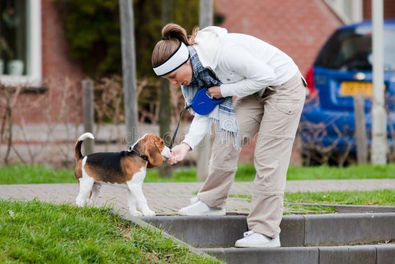 Ragazza che cammina con un cane immagini stock libere da diritti