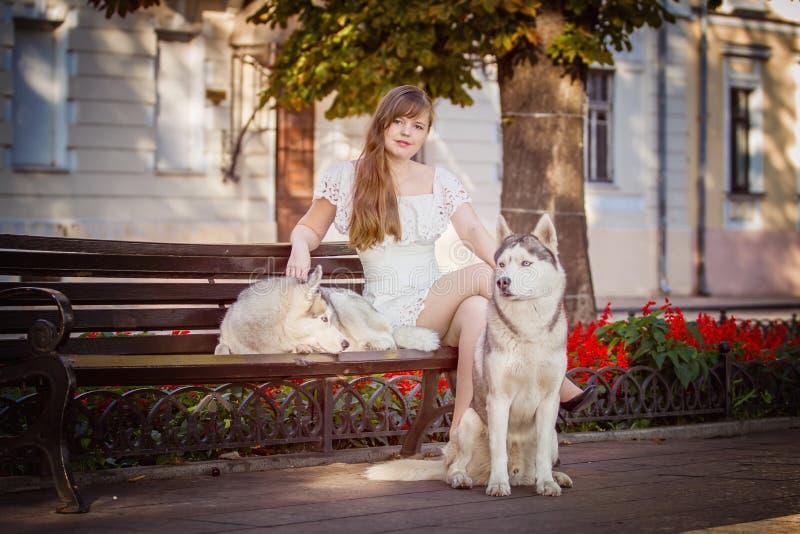 Ragazza che cammina giù la via con due cani immagine stock libera da diritti