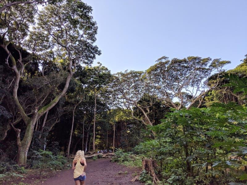 Ragazza che cammina in Hawai tropicali immagini stock libere da diritti