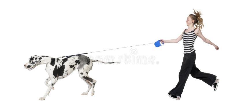 Ragazza che cammina il suo cane (grande danese 4 anni) ha immagine stock libera da diritti