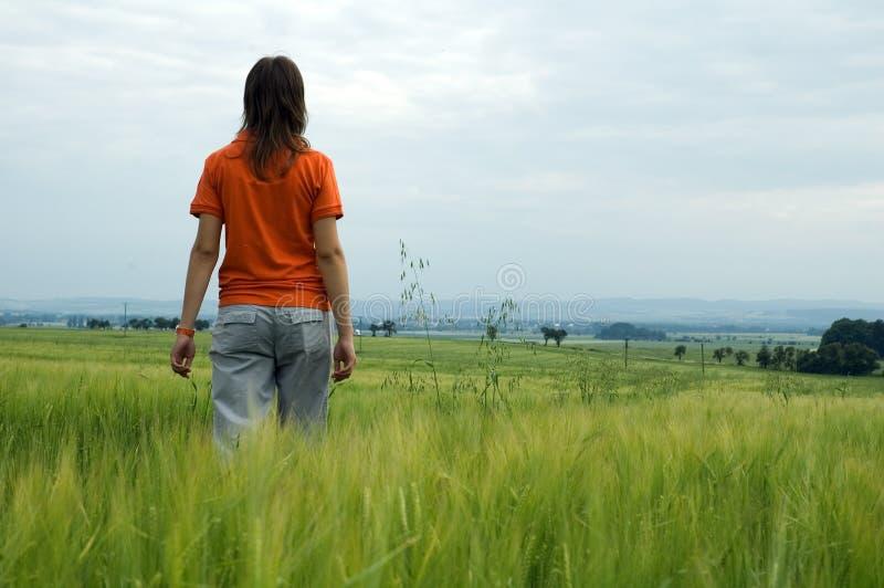 Ragazza che cammina in valle di trascuranza del campo fotografie stock