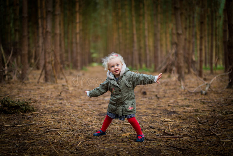 Ragazza che gioca in autunno/caduta di legni fotografie stock libere da diritti