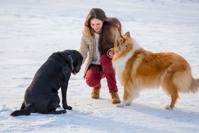 Ragazza che gioca con due cani sul campo di neve di inverno immagini stock libere da diritti