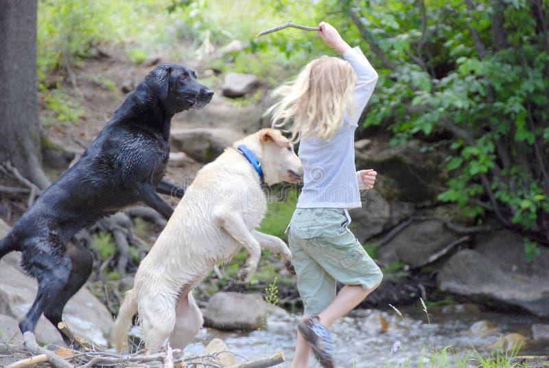 Ragazza che gioca con i cani