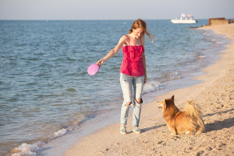 Ragazza che gioca con un cane sulla spiaggia immagini stock libere da diritti
