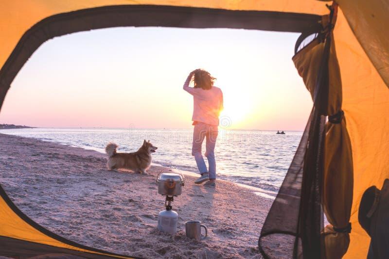 Ragazza che gioca con un cane sulla spiaggia immagine stock