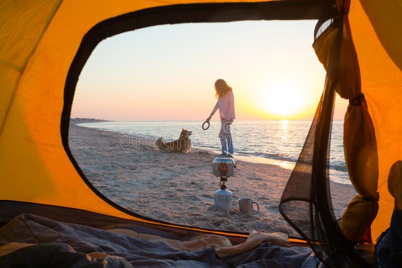 Ragazza che gioca con un cane sulla spiaggia fotografie stock libere da diritti