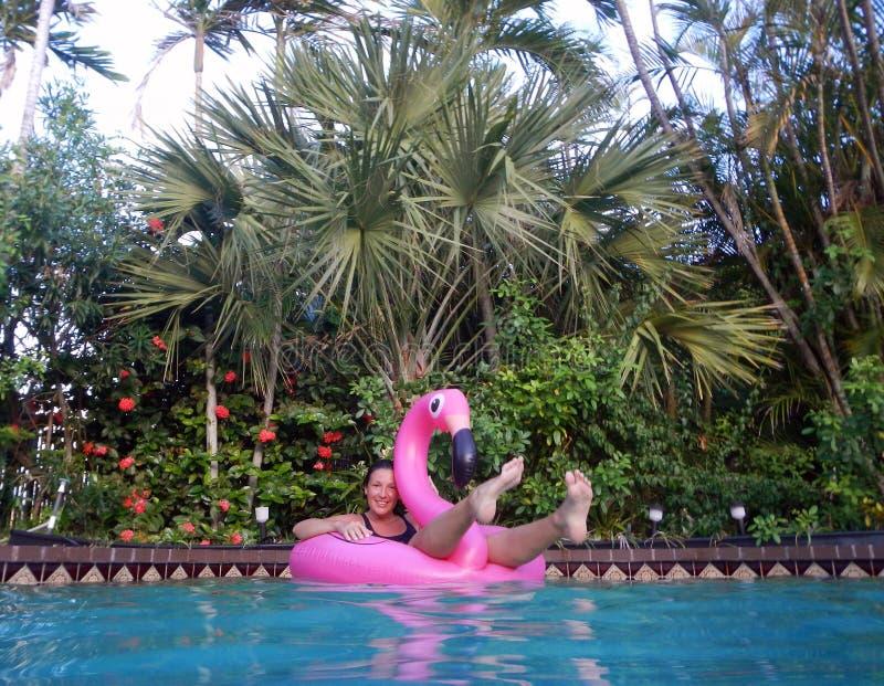Ragazza che gode nella piscina sul galleggiante del fenicottero immagini stock libere da diritti
